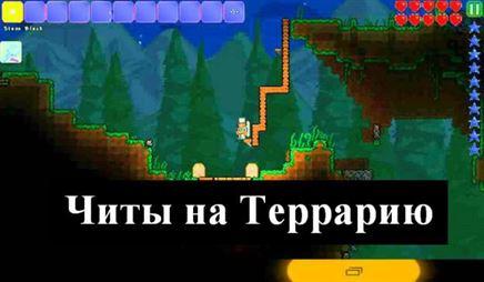 http://oterraria.ru/wp-content/uploads/2016/03/chityi-na-terrariyu-624x364.jpg