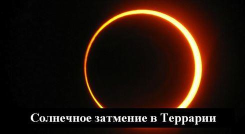 солнечное затмение в террарии