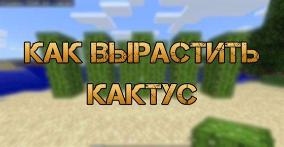 Кактус в Minecraft