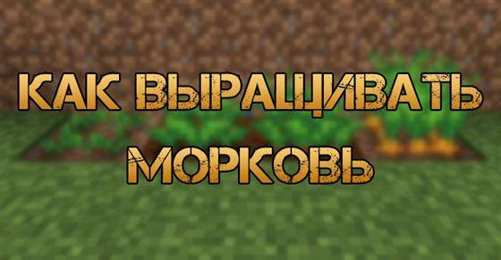 Где найти морковь в Minecraft