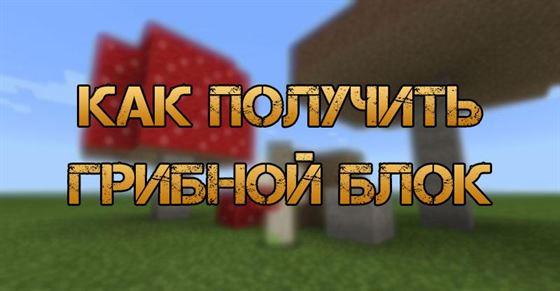 Как получить грибной блок в Minecraft
