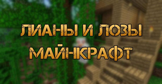 Лианы и лозы в Minecraft