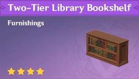 Меблировка двухуровневой библиотечной книжной полки