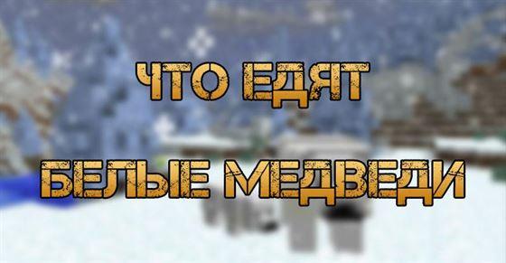 Что едят белые медведи в Minecraft