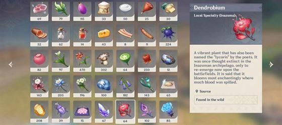 Дендробиум, местный деликатес в Инадзуме (Изображение через Genshin Impact)