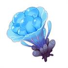 Изображение Морской гриб