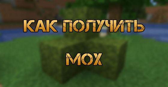 Как получить мох в Minecraft